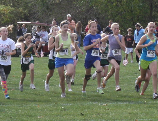 ohio state cross country meet results 2015 masters